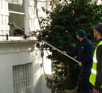 window cleaners at work in Lampton